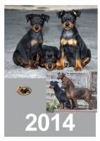Zwergpinscher Jahreskalender 2014