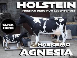 Foto 3 cow deco ist schon cool so ne grosse holstein deko kuh lebensgroß und wann bestellst du….?????