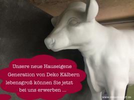 das neue Deko Kälbchen für Kinder … und Deko Bullen für Papa ...