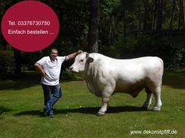 Foto 5 das neue Deko Kälbchen für Kinder … und Deko Bullen für Papa ...