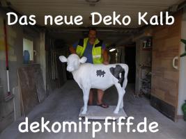 Foto 2 das neue Deko Kalb ist da ….