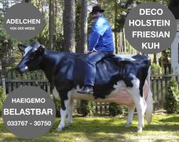 dein nachbar hat ne deko kuh und dein anderer nachbar ein deko pferd und du … ja dann hol dir einen deko stier ...