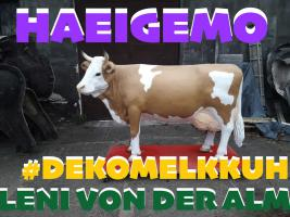 deko melkkuh lebensgross - modell leni von der alm ...