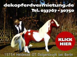 Foto 2 dekopferdvermietung.de  kennste noch nicht oh du wolltest doch ein deko pferd lebensgross mieten ???
