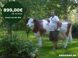 Foto 3 du möchte ein deko pferd für 999,99 Euro ???