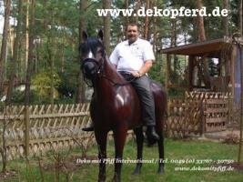 Foto 3 du willst ne Deko kuh oder Deko Pferd ja dann einfach www.dekomitpfiff.de anklicken oder Tel. 033767 - 30750