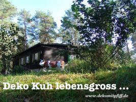 Foto 4 du willst ne Deko kuh oder Deko Pferd ja dann einfach www.dekomitpfiff.de anklicken oder Tel. 033767 - 30750
