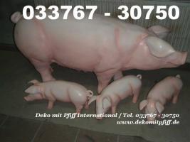 Foto 8 du willst ne Deko kuh oder Deko Pferd ja dann einfach www.dekomitpfiff.de anklicken oder Tel. 033767 - 30750