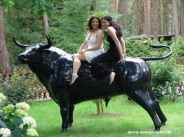 einen Deko Stier  für Deinen garten oder für Deine Hauswand ...