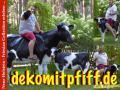 einfach ne deko kuh in ihren garten  # sölden