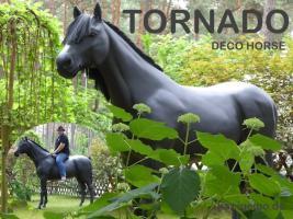 Foto 2 es ist ein deko Pferd stimmt und hast du scon es gesehn tornado ...
