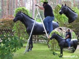 Foto 3 es ist ein deko Pferd stimmt und hast du scon es gesehn tornado ...