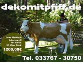 Foto 2 es ist doch egal was ne deko kuh lebensgroß kostet es ist doch eher die frage welchen modell will ich kaufen ..