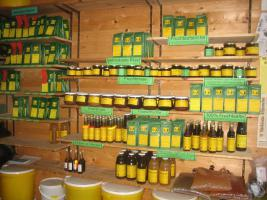 Foto 7 getrocknete Apfelstücke aus dem Naturpark Hoher Fläming