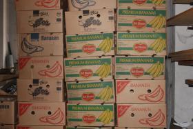 Foto 2 große Mengen an Bananenkisten / Bananenkartons