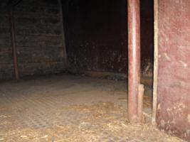 Foto 6 gut erhaltener heller 2 er Pferdeanhänger oder Viehtransporter