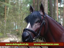 Foto 2 hast du noch kein Deko Pferd in Deinen Büro als Deko ?