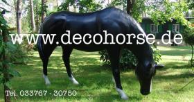 Foto 7 hast du noch kein Deko Pferd in Deinen Büro als Deko ?