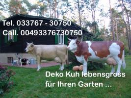 Foto 4 hast Du schon mal darüber nach gedacht eine Deko Kuh in deinen Garten aufzustellen ?