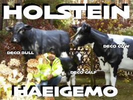 hey das ist ja cool du hast uns gefunden www.dekomitpfiff.de  und suchst ne deko kuh ...
