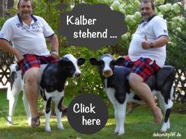 Foto 3 hey das ist ja cool du hast uns gefunden www.dekomitpfiff.de  und suchst ne deko kuh ...