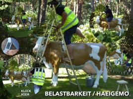 Foto 2 heyyyyy du haste schon gehört die liefern auch deko kuh lebensgroß modelle in die gesamte schweiz ….