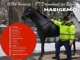 Foto 3 heyyyyy du haste schon gehört die liefern auch deko kuh lebensgroß modelle in die gesamte schweiz ….