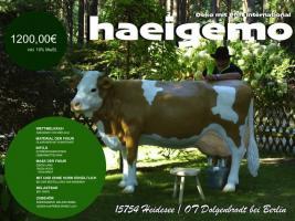 Foto 4 heyyyyy du haste schon gehört die liefern auch deko kuh lebensgroß modelle in die gesamte schweiz ….