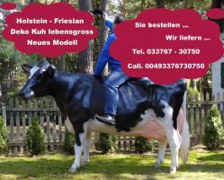 Foto 3 holstein deko kuh - www.holsteinkuh.de
