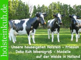 Foto 2 holstein - friesian Deko kuh als Melkkuh ...