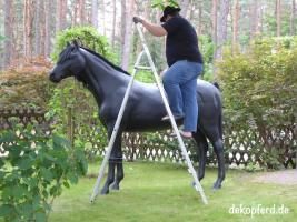 Foto 2 horse deko zum aufsitzen …..