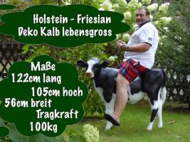 Foto 6 # icke koff mir ne holstein friesian deko kuh ...