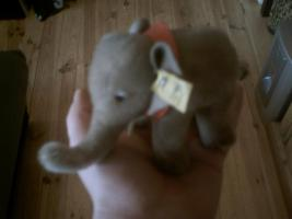 kleiner Elefant von STEIFF (sehr alt)