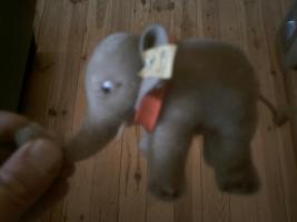 Foto 2 kleiner Elefant von STEIFF (sehr alt)