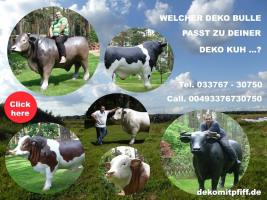 Foto 5 kuh cow als deko in kitzbühel ...