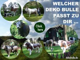 Foto 6 kuh cow als deko in kitzbühel ...
