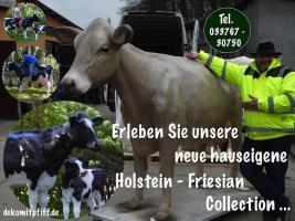 Foto 3 kuh für garten echt jetzt .... ja klar so ne deko kuh lebensgroß