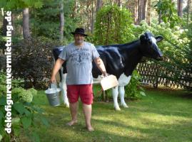 Foto 3 miet dir doch mal ne deko kuh warum kaufen wenn mieten auch geht ...