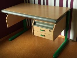 Neuwertiger Moll Schreibtisch Champion Mit Container Lampe