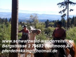 Foto 5 schwarzwald-wanderreiten Todtmoos Au - Reiten für Outdoor-Fans