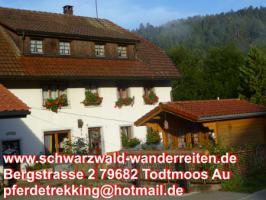 Foto 4 schwarzwald-wanderreiten, Reiten, Wanderreiten in Todtmoos, Urlaub für Outdoor-Fans
