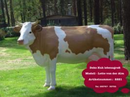 Foto 5 schweizer Deko Kuh für Deinen Garten ….oder doch Deko Bullen ...