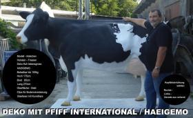 Foto 2 sehs mal so wenn du ne deko kuh kaufst dann kannst sie in deinen garten stellen ...