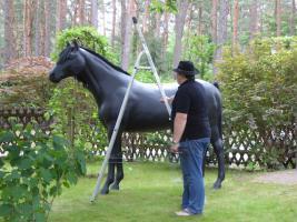 stell dir das deko pferd doch aufs dach ...