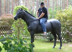Foto 4 stell dir das deko pferd doch aufs dach ...