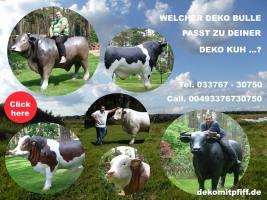 Foto 3 telfs --- wow und hast schon ein deko pferd oder ne deko kuh ...