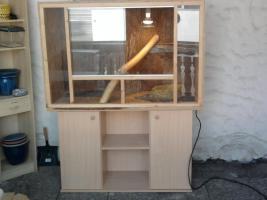 verkaufe terrarium komplett eingerichtet mit aquarienunterschrank, buche