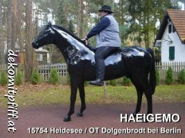 Foto 2 wann kaufen wir ein Pferd mama ???
