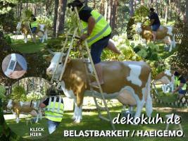 Foto 2 wann kaufst Du Dir mal einen Deko Stier oder so einen Deko Bulle lebensgroß ...?