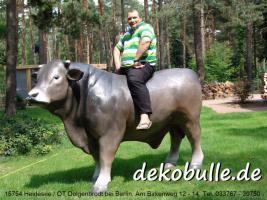 Foto 4 wann kaufst Du Dir mal einen Deko Stier oder so einen Deko Bulle lebensgroß ...?